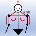 脱力と体軸について考える(1)の詳細へ