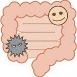 自閉症と腸内細菌の詳細へ