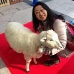 寒い冬には羊料理の詳細へ