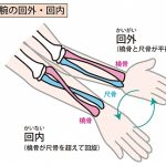 コントラバス左手の運指をもっと自由にしたいの詳細へ